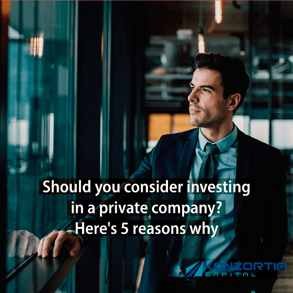 5 Reasons Why You Should Consider Investing Into a Private Company
