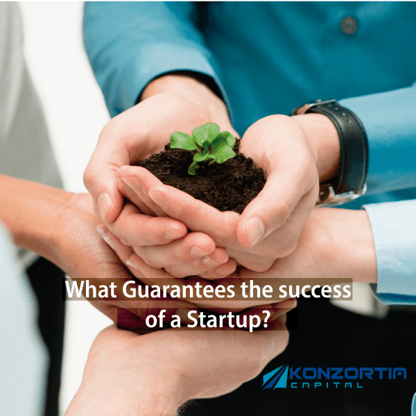 What Guarantees the success of a Startup?